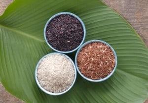 mono diète- riz