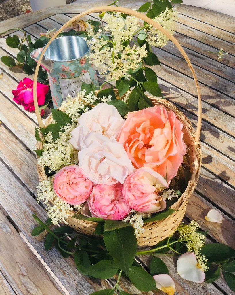 champagne des fées-pétales de roses